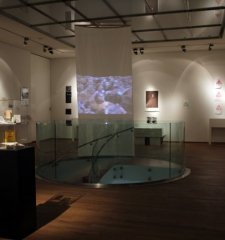 Installation view of exhibition, NYC