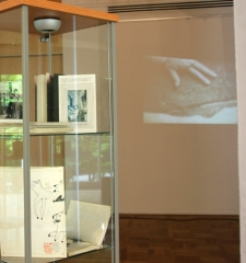 Installation detail of display cases