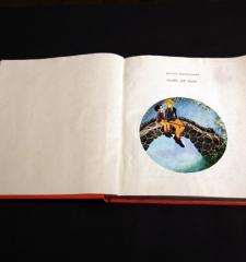 Astrid Lindgrenová, The Brothers Lionhearted, 1982